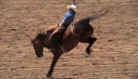 Bronco busting at rodeo in Cheyenne, Wyoming