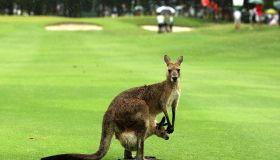 Australian PGA Championship - Day 4