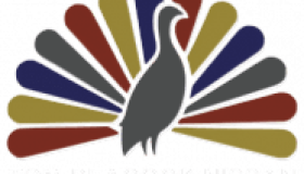 tom peacock