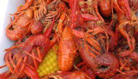 2016 Live After 5 Crawfish Boil